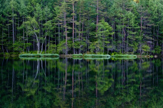 2012-06-29_010.jpg