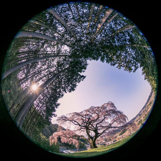 Canon EOS 6D_170414_475.jpg
